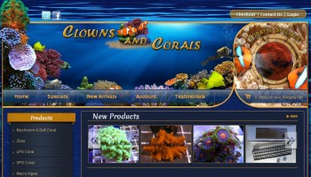 Clowns and Corals